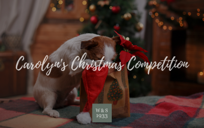 Christmas Competition Crossword